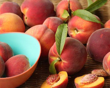 Fruit of the Spirit Faithfulness and Gentleness